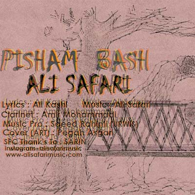 http://www.alisafarimusic.com/wp-content/uploads/2016/10/pisham-bashi2.jpg